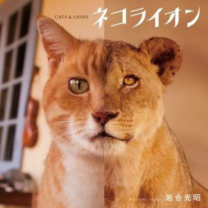 Cat and Lion by Mitsuaki Iwago - Japanese photography book