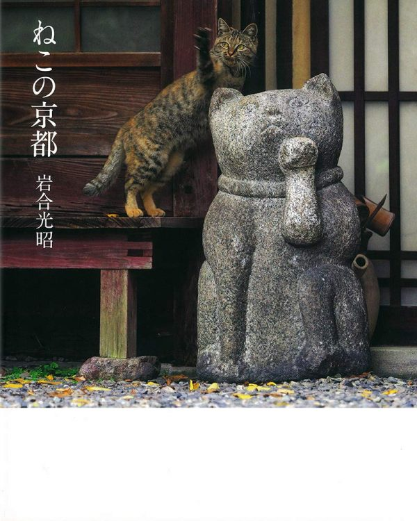 Cats living in Kyoto by Mitsuaki Iwago - Japanese photography book