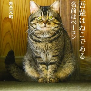 I am a cat, my name is bacon by Mitsuaki Iwago - Japanese photography book