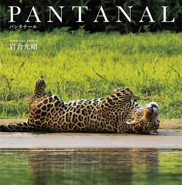 PANTANAL by Mitsuaki Iwago - Japanese photography book
