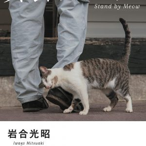 Stand by Meow by Mitsuaki Iwago - Japanese photography book